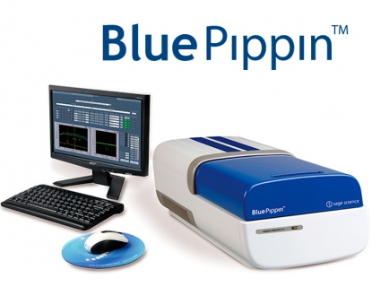 System BluePippin
