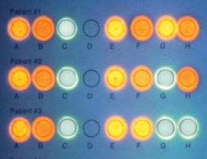Zaawansowane techniki DNA